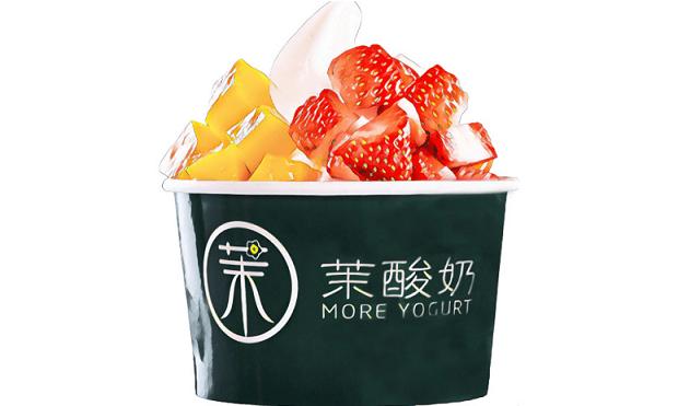 茉酸奶加盟支持